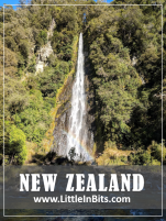 New Zealand Thunder Creek Falls Walk Haast Pass