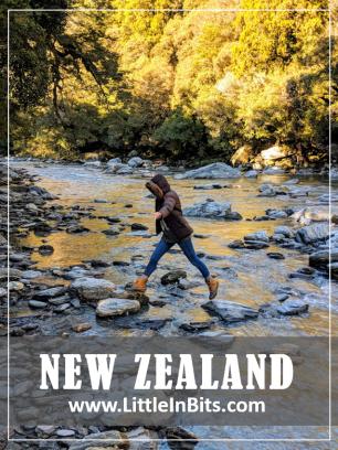 New Zealand Thunder Creek Falls Walk Haast Pass