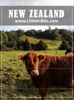 New Zealand Rawhiti Cave Abel Tasman