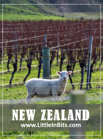 New Zealand Yealand's Winery Marlborough