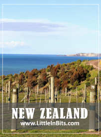 New Zealand Yealand's Winery Marlborough