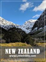 New Zealand Gertrude Saddle
