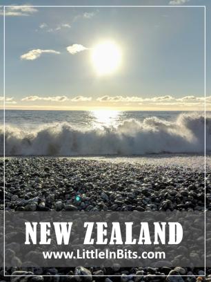 New Zealand Dolphins Ship Creek Tauparikaka Marine Reserve