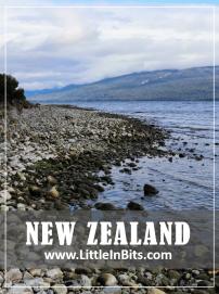 New Zealand Henry Creek DOC Campsite